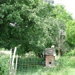 Fahrbares Hühnerhaus