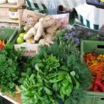 Die Würze des Lebens - Kräuter, Chillies, Ingwer und Honig