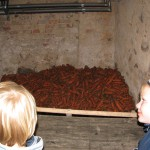 Möhrenlager im Keller.